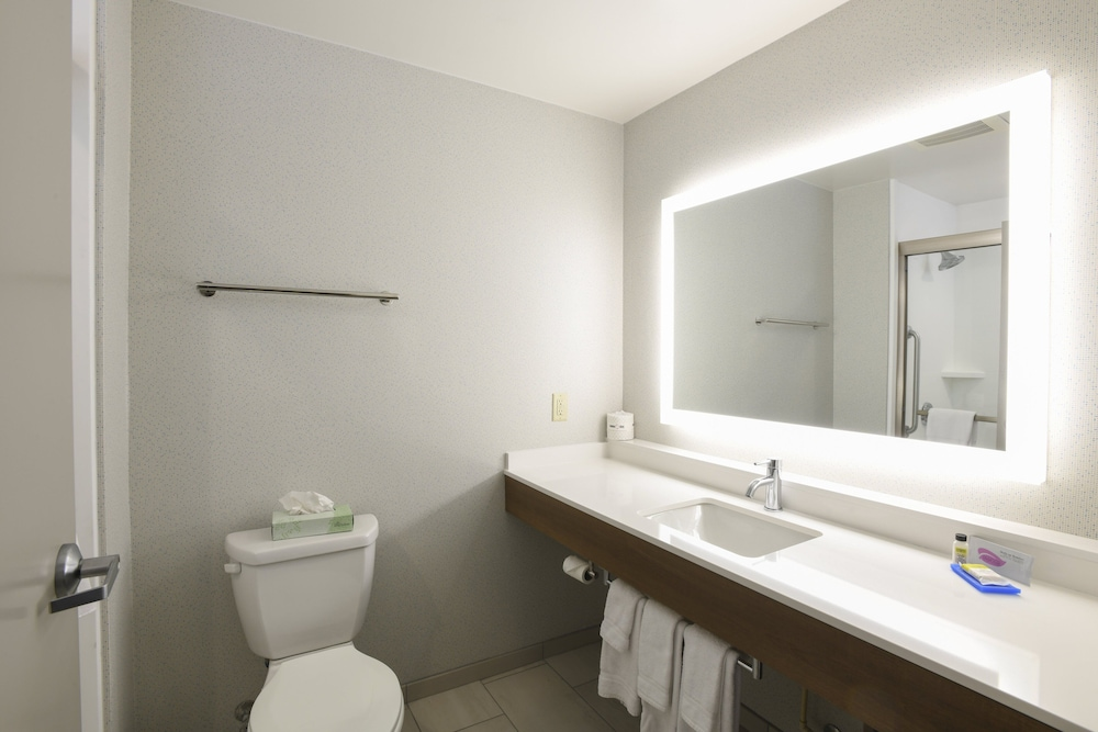 Bathroom, Holiday Inn Express Hotel & Suites Richwood-Cincinnati South