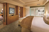 The Ritz-Carlton Dubai International Financial Centre (33 of 69)