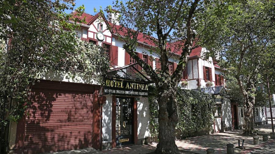 Boutique Hotel Antinea