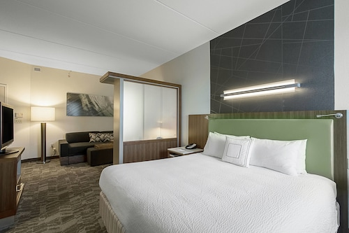 SpringHill Suites by Marriott Tampa North/I 75 Tampa Palms