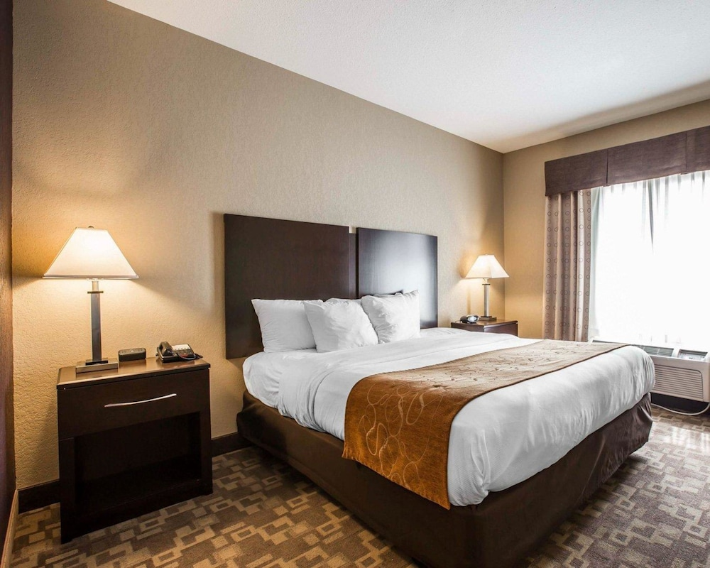 Room, Comfort Suites Whitsett - Greensboro East