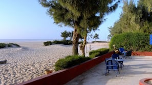 Plage, sable blanc, parasols