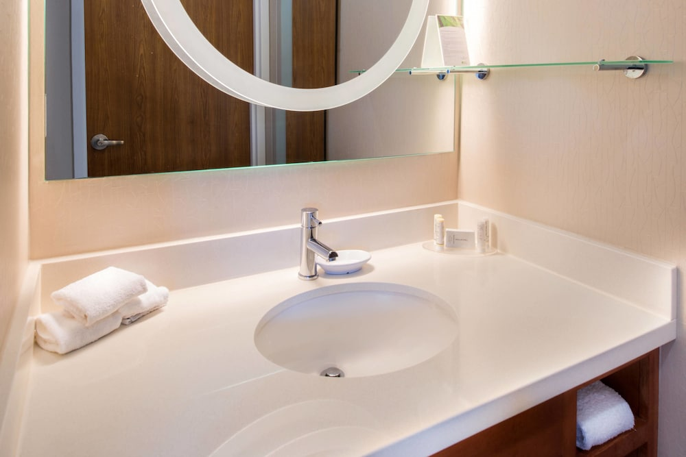 Bathroom, SpringHill Suites by Marriott Pittsburgh Southside Works