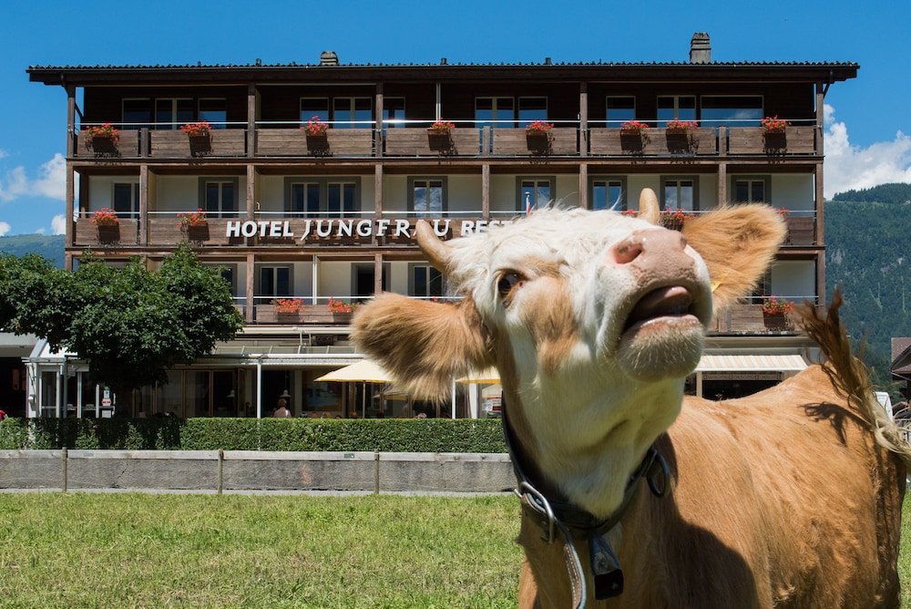 Featured Image, Jungfrau Hotel