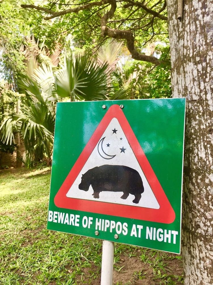 St  Lucia Wetlands Guest House - Reviews, Photos & Rates - ebookers com