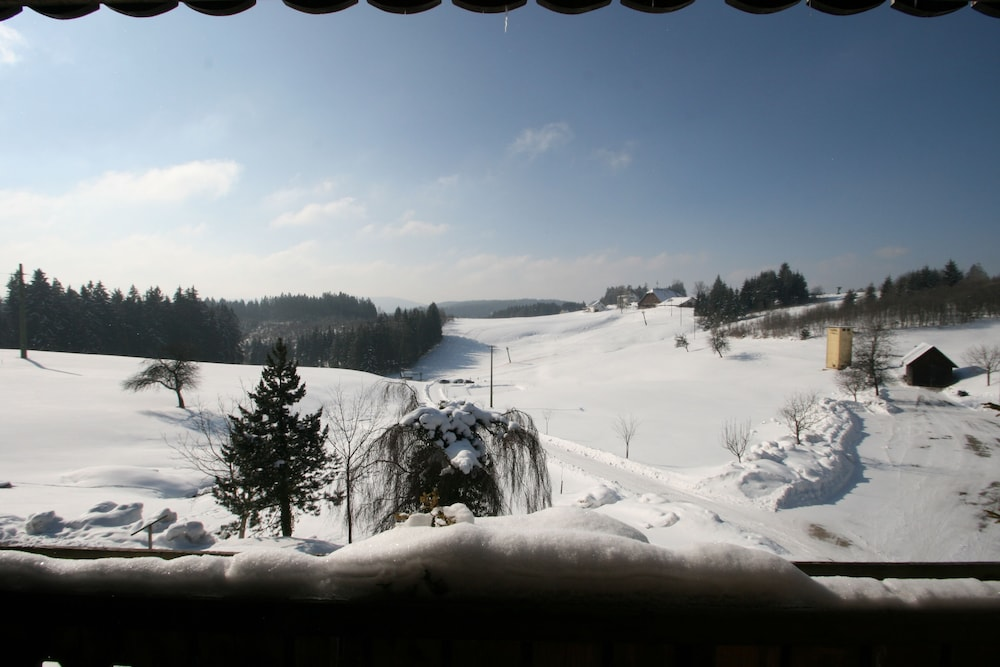 View from Property, Café Pension Feldbergblick