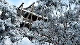 Silverski Boutique Hotel and Penthouse Apartments - Falls Creek Hotels