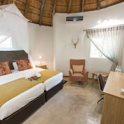 Sefapane Lodges and Safaris