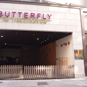 Butterfly on Wellington