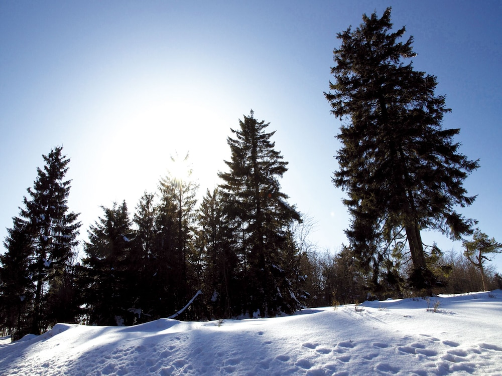 Snow and Ski Sports, AVITAL Resort Winterberg
