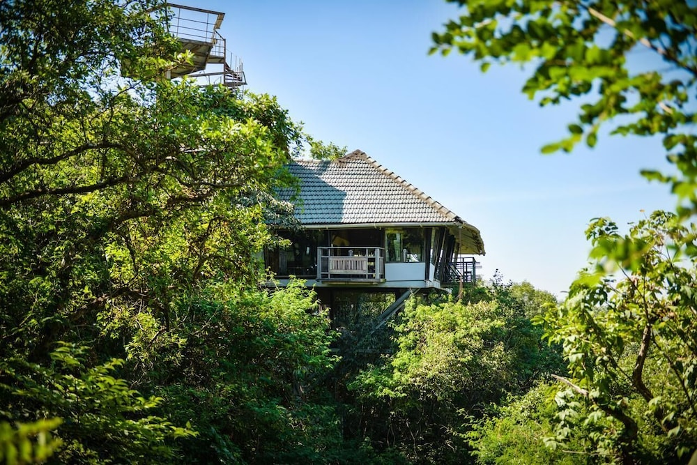 Luxurious Comfort Treehouse in Maharashtra in Paud | Hotel