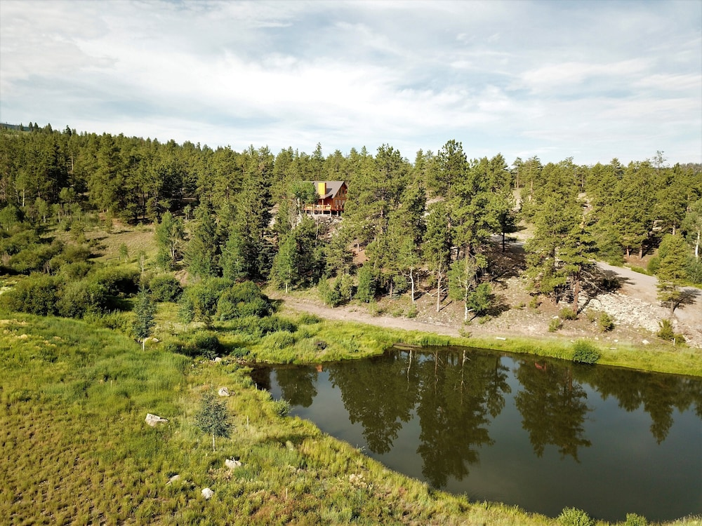 , The Timberwolf: Brand NEW Cabin Borders the National Forest