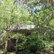 Treetop Oasis in the Heart of Fair Harbor, Fire Island