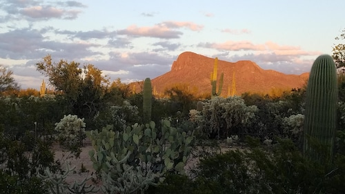 Sonoran Desert Getaway Adjacent to Saguaro National Park West in Picture Rocks
