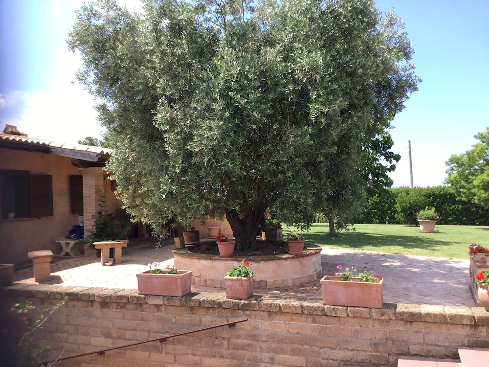 Property Grounds, House in the Countryside Near Cerveteri