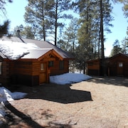 La Plata Mountains Cabins - 2 Cozy Log Cabins In SW Colorado Near Mesa Verde NP