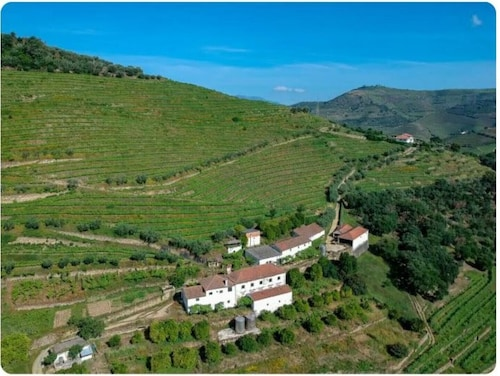 Casa do Feitor in Quinta do Vilar - Douro Valley