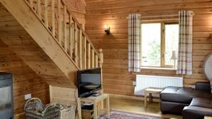 电视、壁炉、DVD 播放器、书