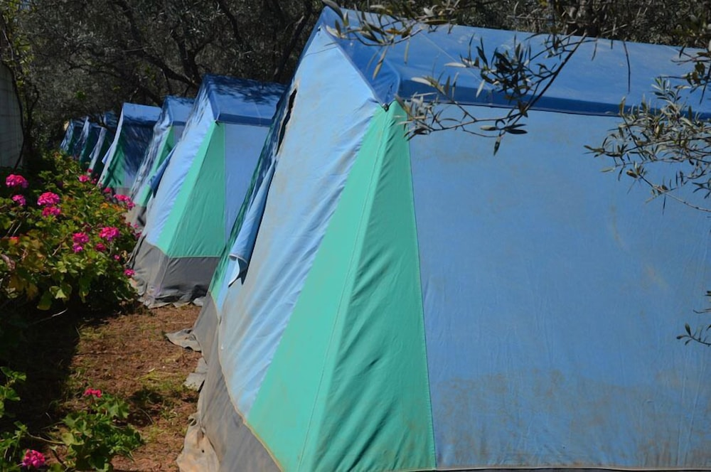 Terrace/Patio, Camping Chania