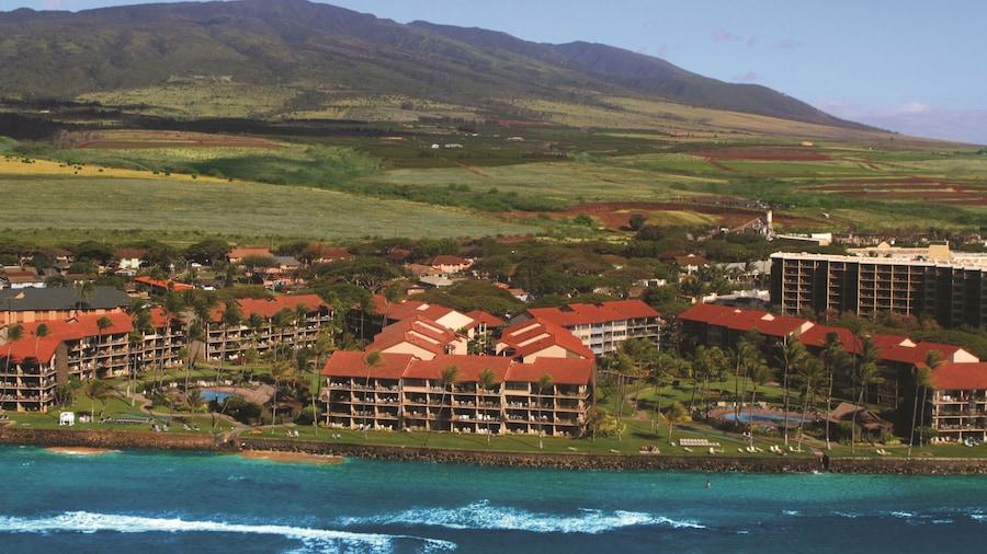 AEI at Papakea Resort Maui