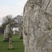 Historic Vegetarian & Vegan Bed & Breakfast Inside a 5500 Year old Stone Circle