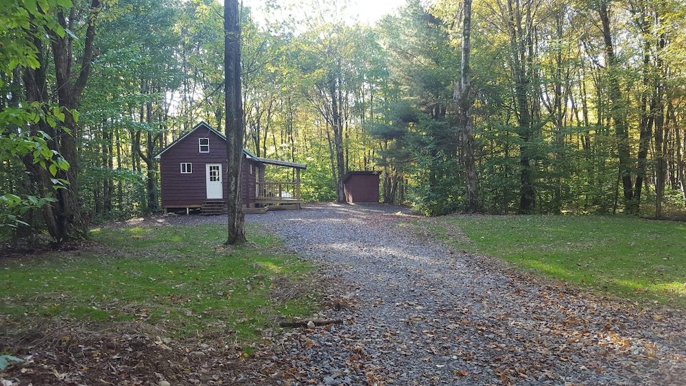 Property Grounds, Cabin Near Pulaski by the Salmon River Falls!