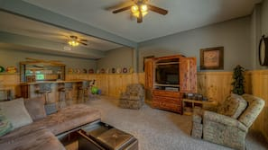 TV, fireplace, video library