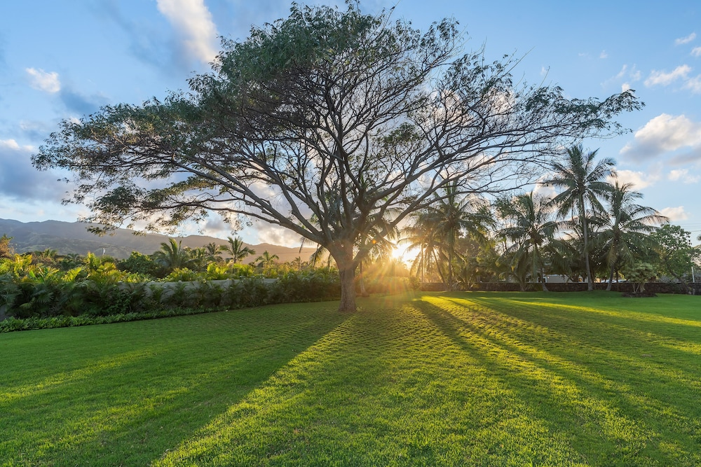 Property Grounds, North Shore/waialua - Large Estate Home W/resort-style Pool, Steps to Beach!
