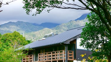 Yakushima South Coast House