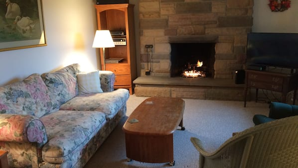 TV, fireplace, stereo