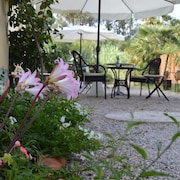 Hotel Gli Acquerelli Bed & Breakfast