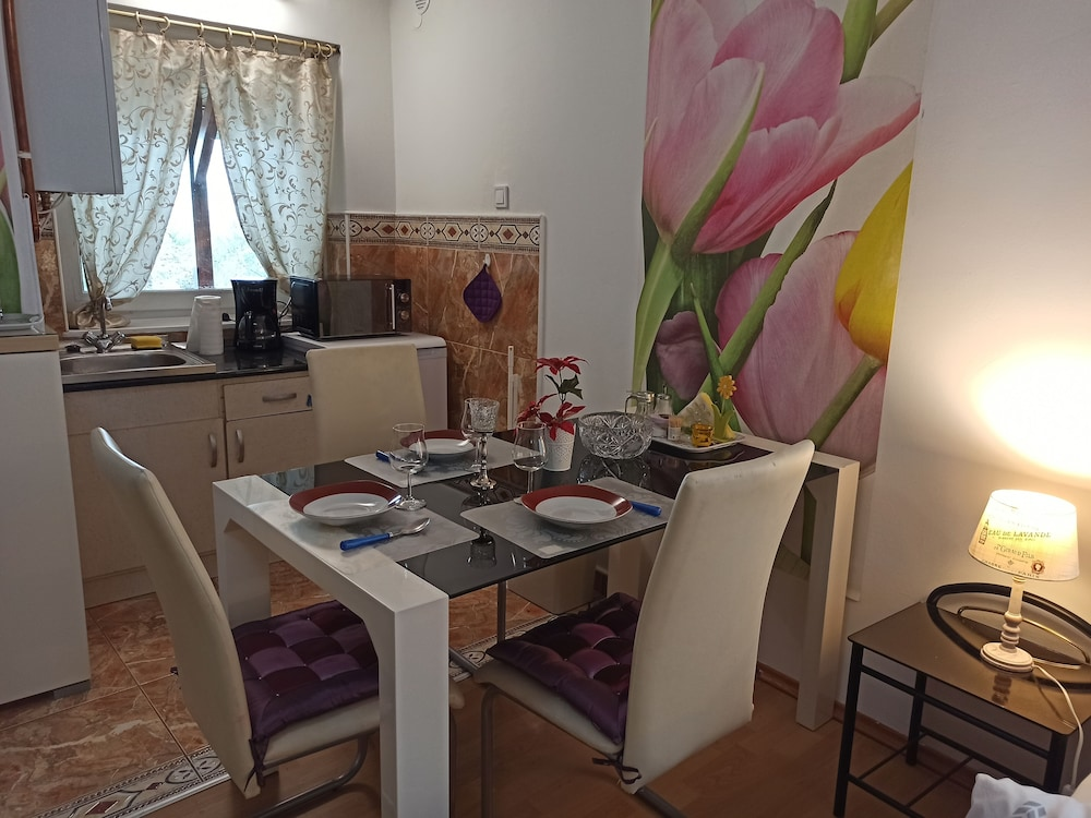 Private Kitchen, Peace and Quiet in a Cottage in Sopron