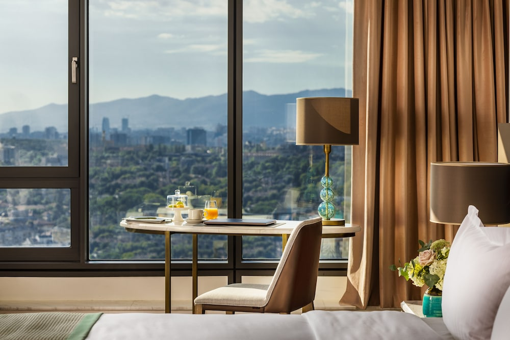 Mountain View, Grand Hotel Millennium Sofia