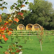 Southwell Retreat Glamping Pods