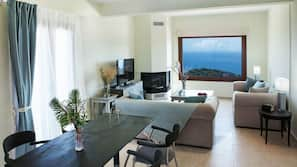 Flat-screen TV, fireplace, video-game console
