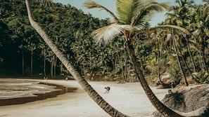 Plage, sable blanc, bar de plage
