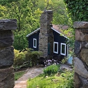 New! Hidden Spring Cabin in Bluemont Virginia