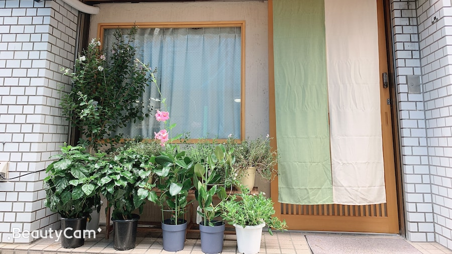 Hotel Minami