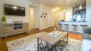 Luxurious Business & Family Montrose Condo -