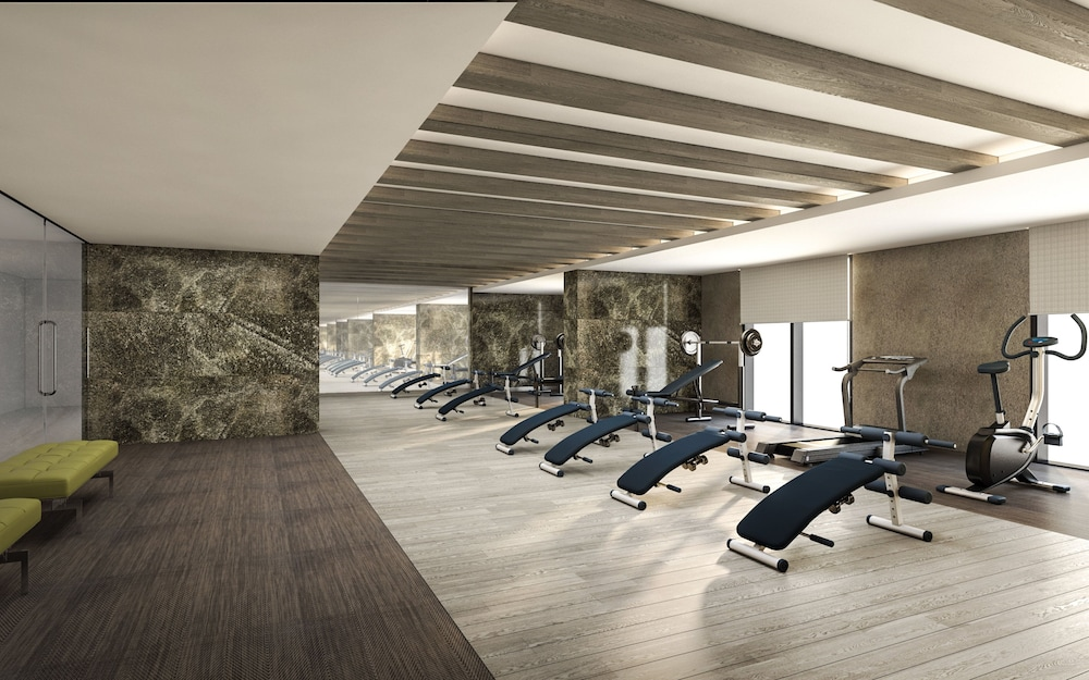 Fitness Facility, Holiday Inn Dubai Al-Maktoum Airport