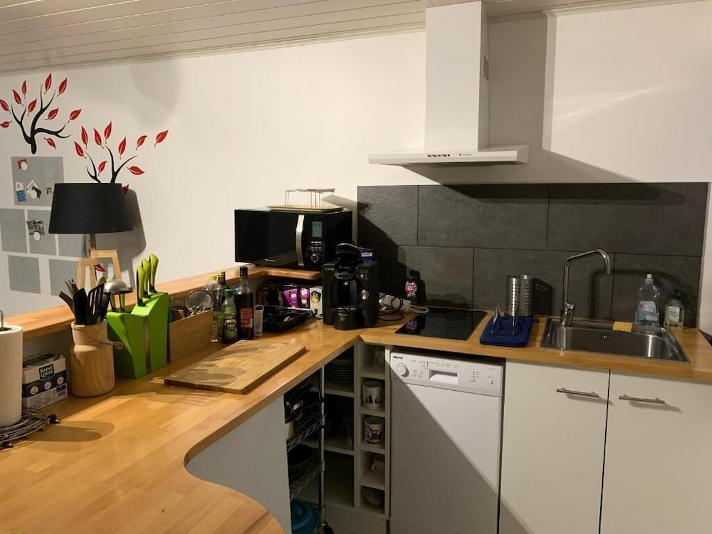Private Kitchen, Apartment With Garden