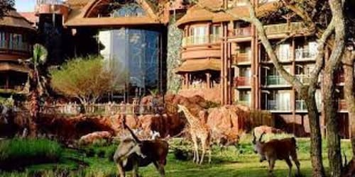 Disney's Animal Kingdom Lodge Deluxe Studio- Savanna View