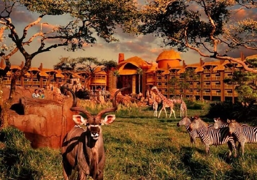 Disney's Animal Kingdom Lodge- Standard View