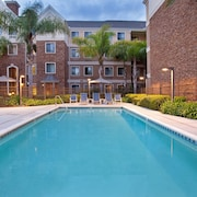 Equipped Suite With Pool Access Free Breakfast, Shuttle + Fitness Center Access