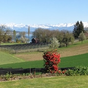 Apartment in a Villa With Lake and Mountain Views, Idyllic Location, Near Lucerne