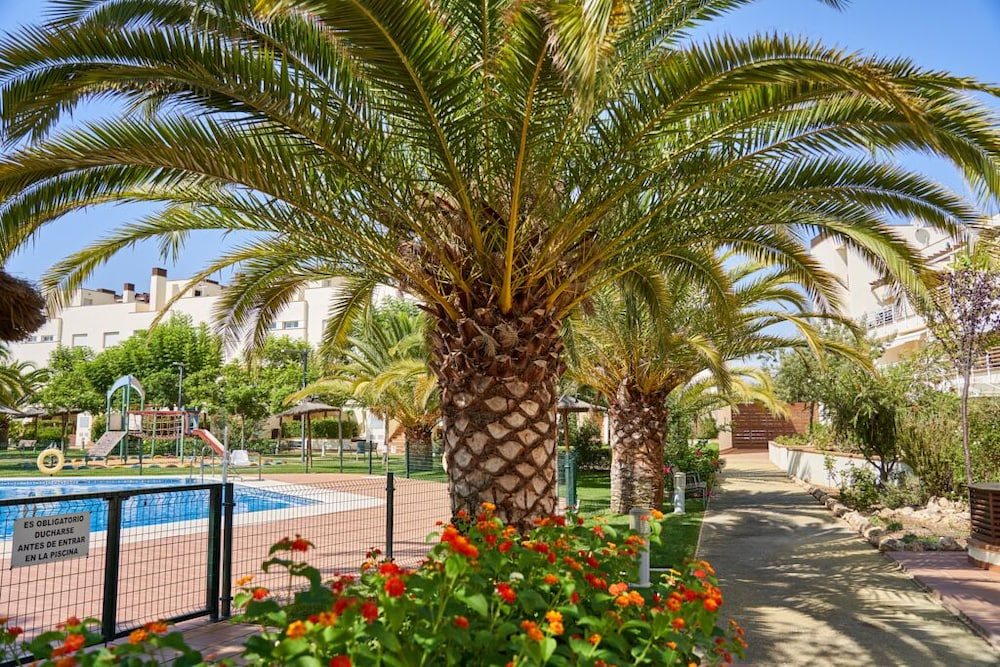 Property Grounds, Beachfront Apartment, With Pool and Urban Areas. Zarati