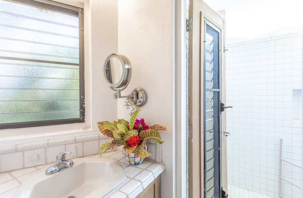 Bathroom, Sea Fans - 4 BR Beachfront Villa on Spectacular Mahoe Bay