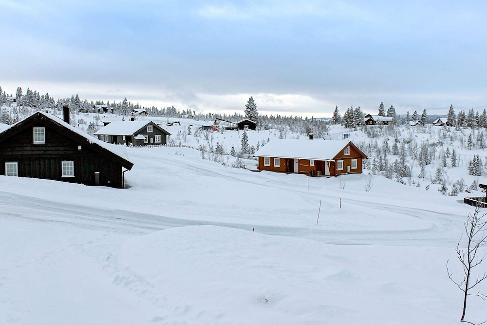 Snow and Ski Sports, 6 person holiday home in NESBYEN