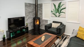 TV, fireplace, music library, video library