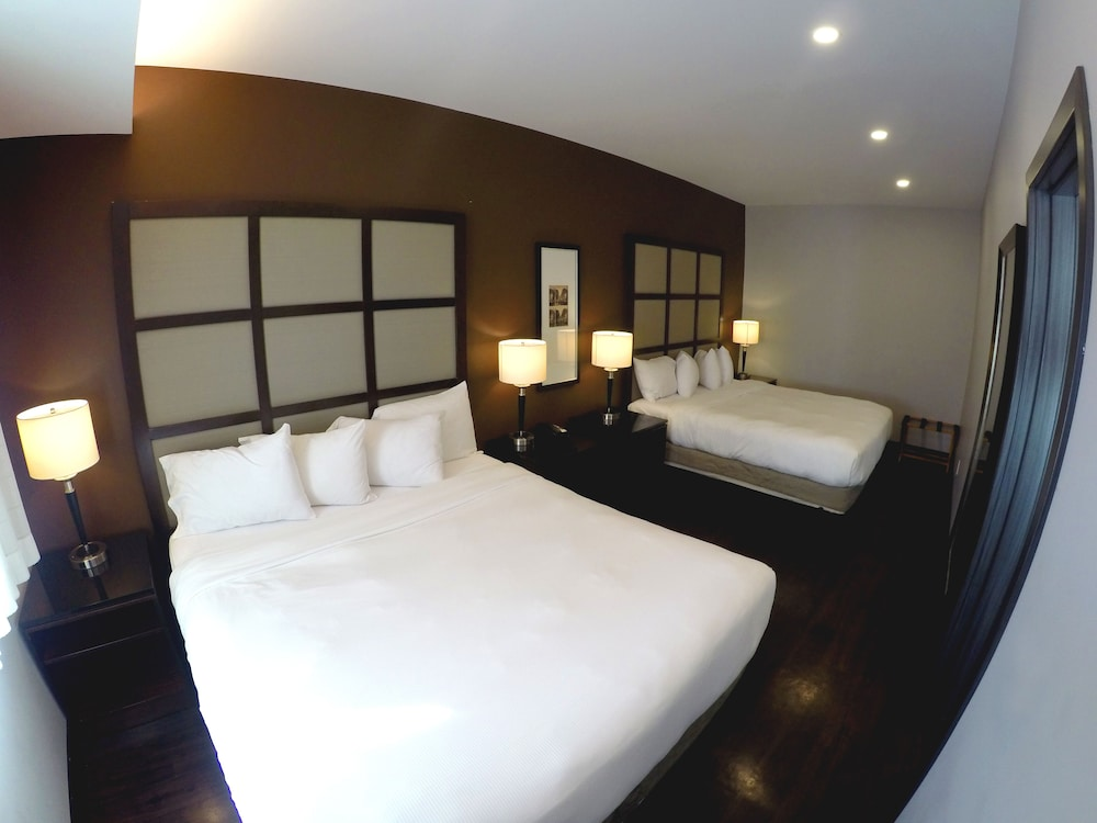 Room, M Montreal